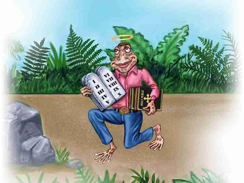 "Escapade 1 : The ""Religious Fanatic"" Toad"